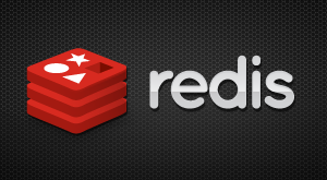 Why Redis Needs Enterprise Developers